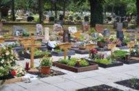 Urnenreihen- und Urnenwahlgrab