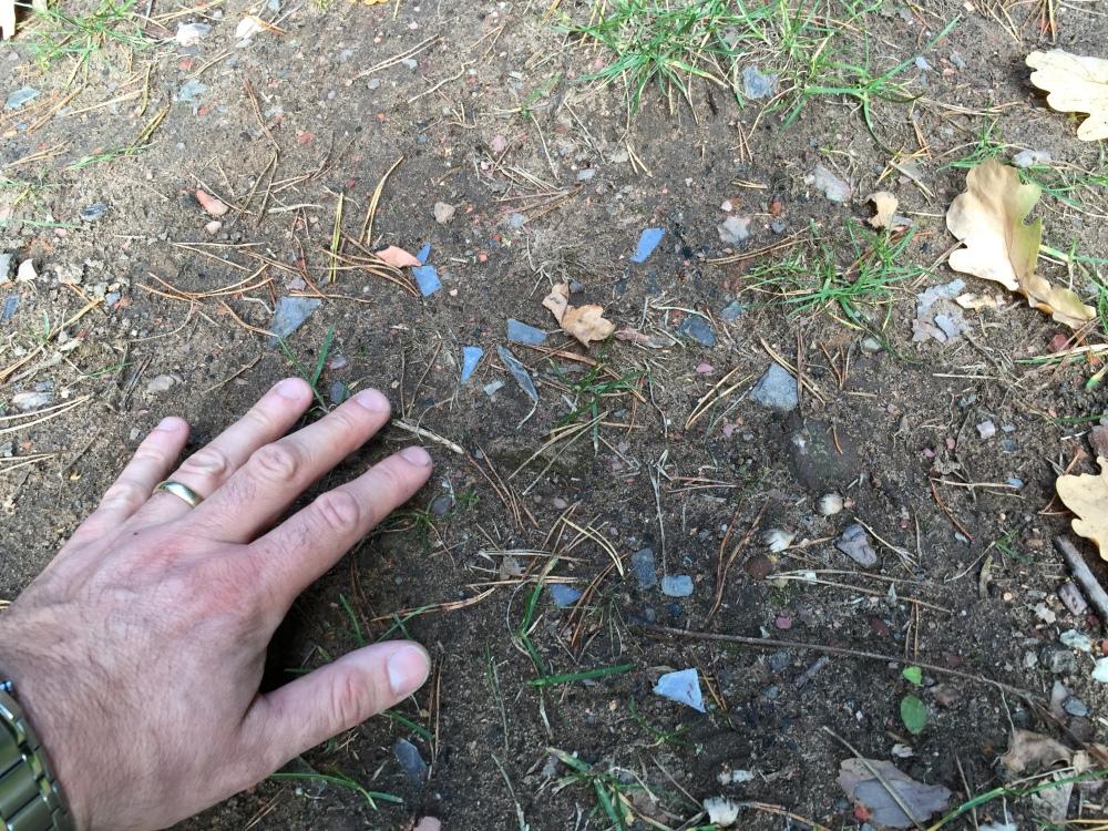Glasscherben auf dem Boden am Kinderspileplatz Wildgehege