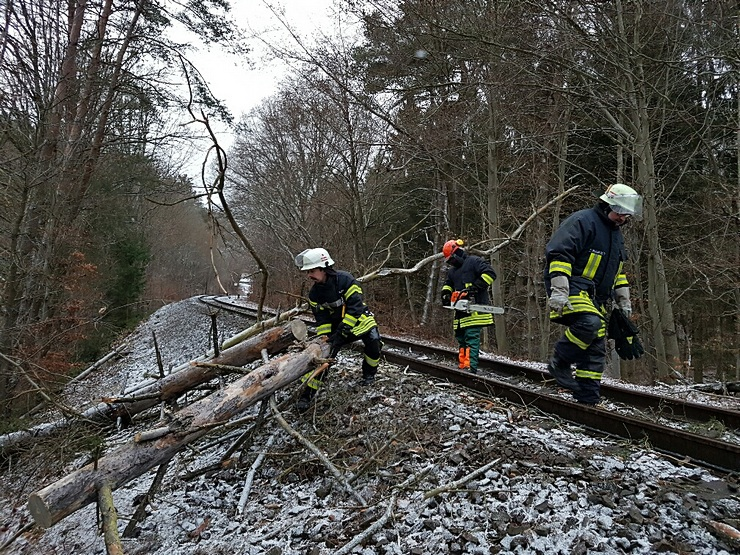 umgestürzte Bäume blockierten oder gefähreden den Verkehr, wie hier auf der Bahnstrecke Saarbrücken - Pirmasens...